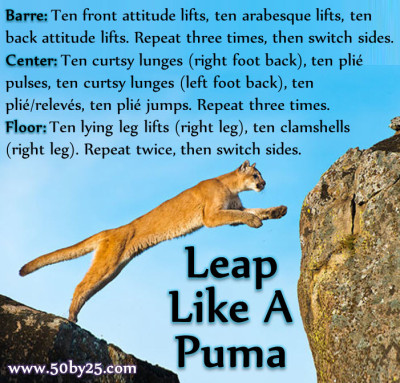 Leap Like A Puma Bodyweight Barre Workout