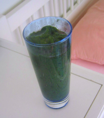 Kale Blueberry Breakfast Smoothie
