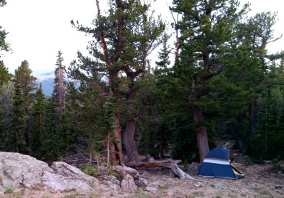 CO_103_Mile_15_Campsite