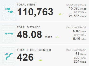 Fitbit_Challenge_Totals_March_14