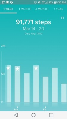 Fitbit_Challenge_Totals_March_21