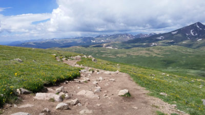 Trail_Down_Bierstadt