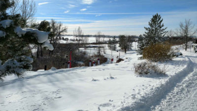sixpack_1_snowy_course