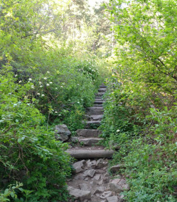 Staircase_Up_Amphitheater_Trail_To_Green_Mountain