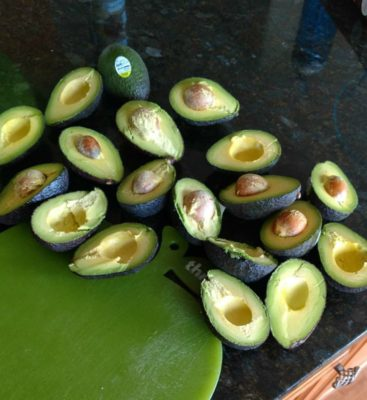 All_The_Avocados