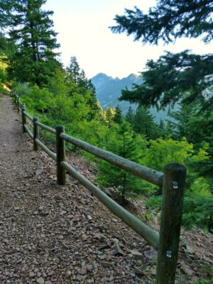 Fence_on_Rattlesnake_Gulch_Trail