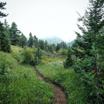 Goshawk_Ridge_Trail
