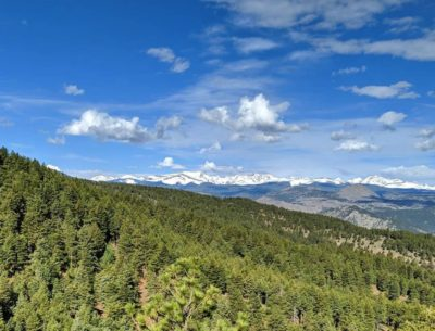 Views_of_White_Peaks_and_Green_Forest