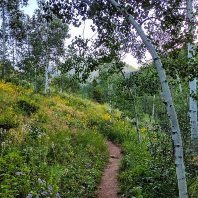 Aspen_Framing_Pitkin_Lake_Trail