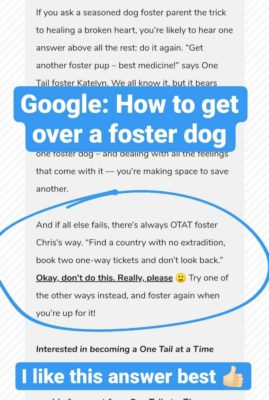 How_To_Get_Over_Foster