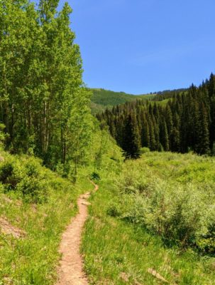 Vail_from_Game_Creek_Trail