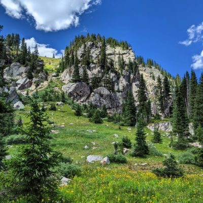 Turquoise_Lake_Meadows_and_Mountains